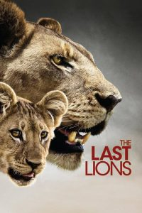 """Poster for the movie """"The Last Lions"""""""